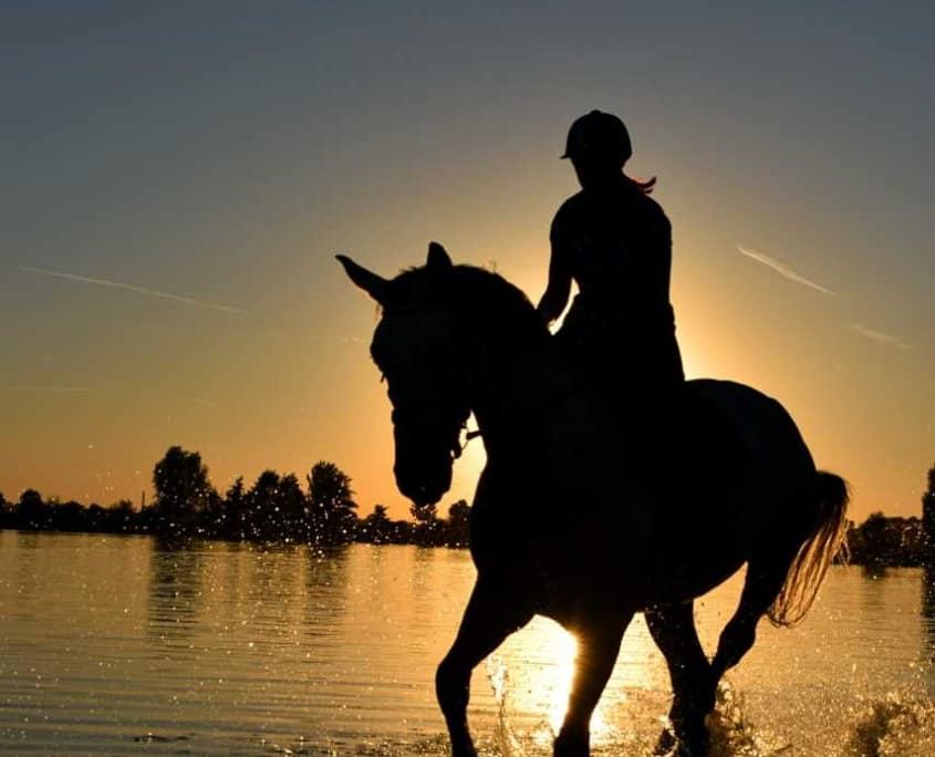 De drie vijvers vakantie te paard aan zee
